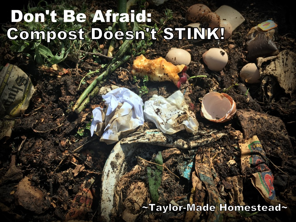 Don't Be Afraid - Balanced Compost Doesn't Stink! For those starting out with composting there's some hesitation. You're rotting things in a pile, doesn't that stink? The answer is: NO! #TaylorMadeHomestead