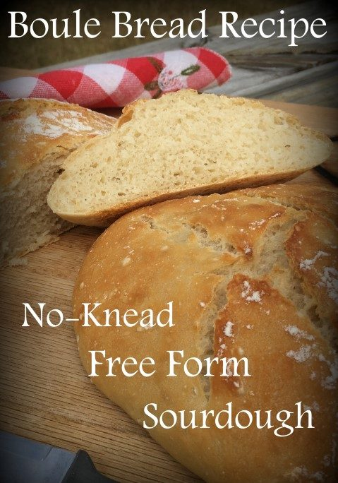 I made Boule, an easy no-knead and free-form bread recipe. It was easy & much less hands-on than other breads I've made. And delicious! #TexasHomesteader