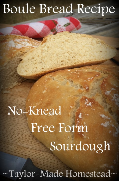 I made Boule, an easy no-knead and free-form bread recipe. It was easy & much less hands-on than other breads I've made. And it's delightfully chewy & delicious! #TaylorMadeHomestead