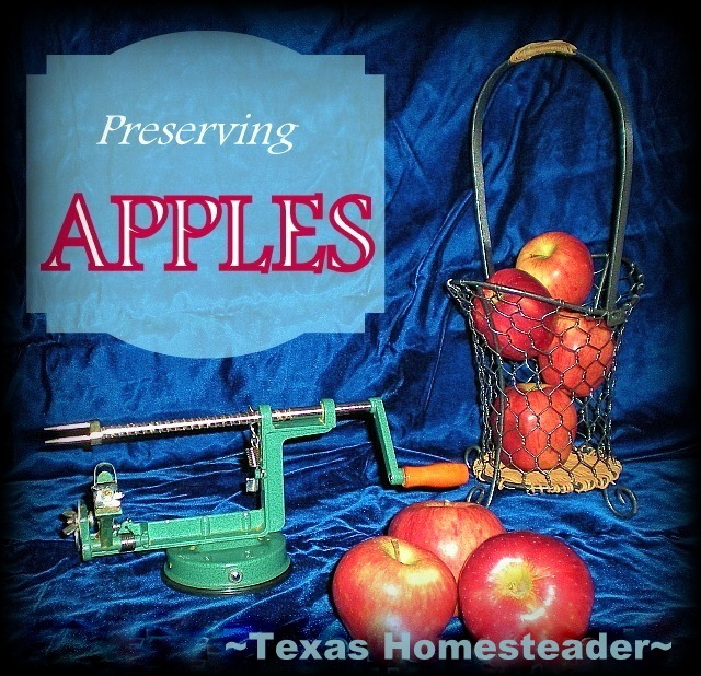 Fruit rollups. My aunt shared bushes of apples from her tree, so I sat out to preserve them. Come see my 5 favorite ways to preserve fresh apples. #TxHomesteader