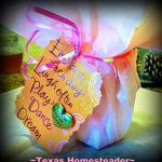 8 Eco-Friendly gift ideas. Come see the Top 10 Most Popular Homesteading Posts on my blog! Some crafts, some recipes, and some social observations too! #TexasHomesteader