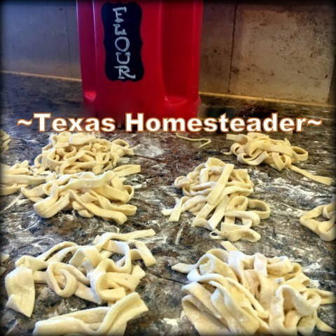 Homemade Pasta. What do you do with leftover steak? Come see my Fast-Food solution of making a new dinner of beef tips & noodles with those leftovers. #TexasHomesteader