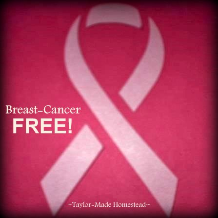 Breast cancer - a frightening diagnosis. Today I'm 5 years cancer free. As frightening and emotional as the experience was, there were many blessings to behold too. Read my story. #TaylorMadeHomestead