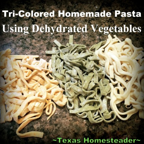 I love homemade pasta, but I wanted tri-colored pasta. So to my usual pasta dough recipe I added dehydrated & powdered spinach or carrots, leaving 1/3 plain. Delicious! #TexasHomesteader