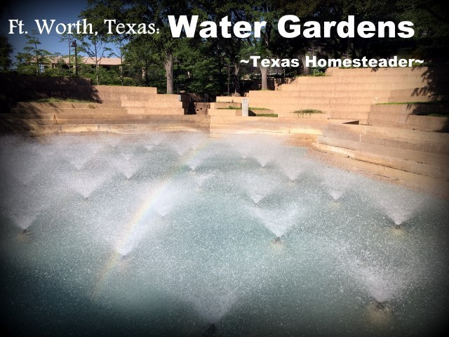 Ft. Worth Water Gardens. We took a vacation in Ft. Worth, Texas. I've lived in the Dallas area most of my life, so of course I've been to Ft. Worth many times. But it was always to drive to a specific location or event, never to stay & play. Now this is gonna be fun! #TexasHomesteader