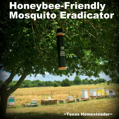 Honeybee-Friendly Mosquito Eradicator Baits. I've tried all the remedies you read about, none worked. Then a friend told me about these Mosquito Eradicator baits. I'm amazed! Success at last~ #TxHomesteader