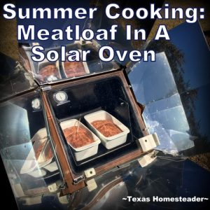 I'm cooking up our favorite comfort food - meatloaf! I'm using my solar oven to cook it but the recipe includes standard oven directions too #TxHomesteader