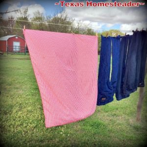 2013 Top 10 - Come see the top 10 homesteading posts of the year! #TexasHomesteader