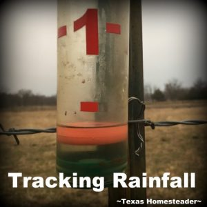I need an easy way of tracking rainfall. Making notes on a calender doesn't work for me, but this easy Homestead Hack does. #TxHomesteader