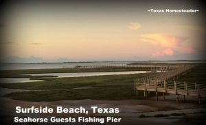 Fishing pier. Make time to spend with family! Life's short and there's no promise of tomorrow. Recently we spent family time at Surfside Beach, Texas. #TexasHomesteader