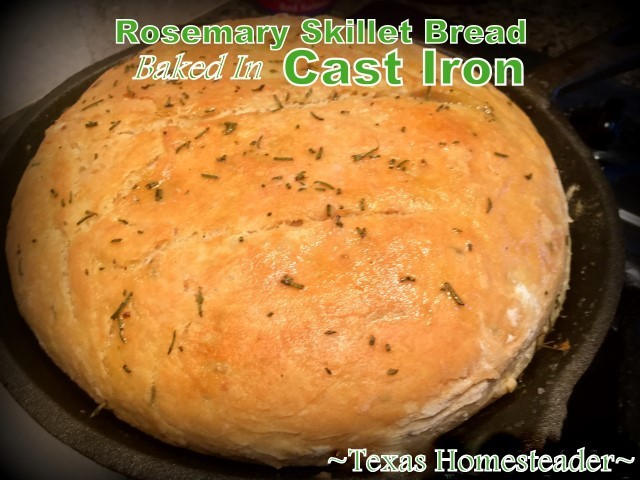 Rosemary Skillet Bread baked in a cast iron skillet. #TexasHomesteader