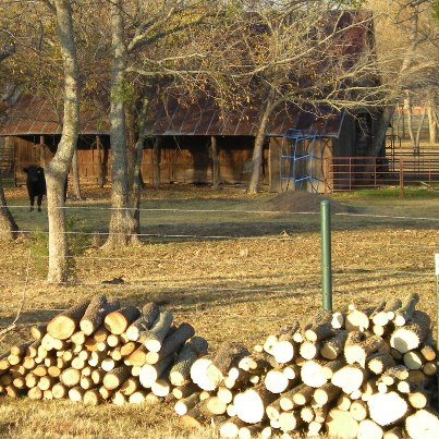 FireWood. It's a wondrous world in the country, especially when viewed through a city-girl's eyes. Come see & experience with me #TexasHomesteader