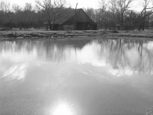 01-13 Barn Pond (2)