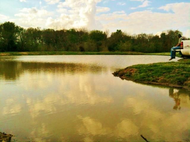 All Work & No Play... Fishing at the pond #TexasHomesteader