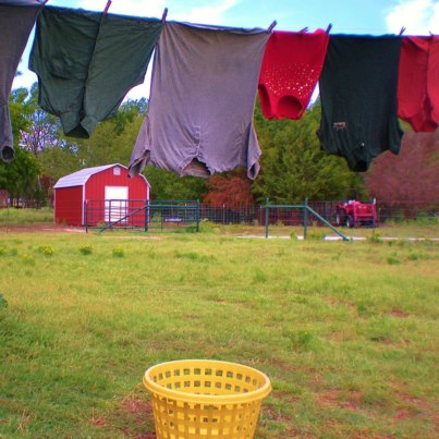 Hanging clean laundry on clothesline #TexasHomesteader