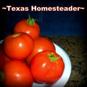 "Fresh salsa from the garden in minutes? Yes please! It's surprisingly easy to eliminate large amounts of trash from entering your home. I thought to myself ""I wonder if I can MAKE that?"" I found it's easy! #TexasHomesteader"