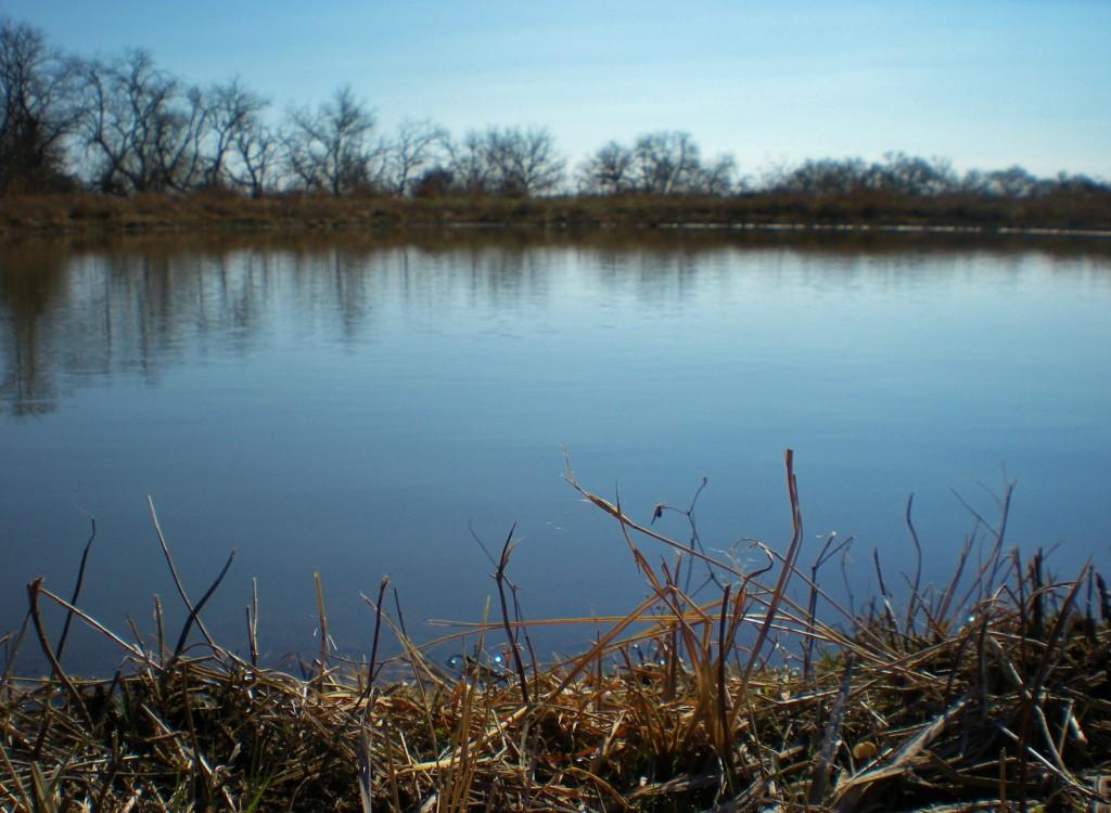 Ponds Filling