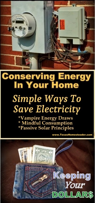 Simple energy-saving tips anyone can use to save on electricity in your home. #TexasHomesteader