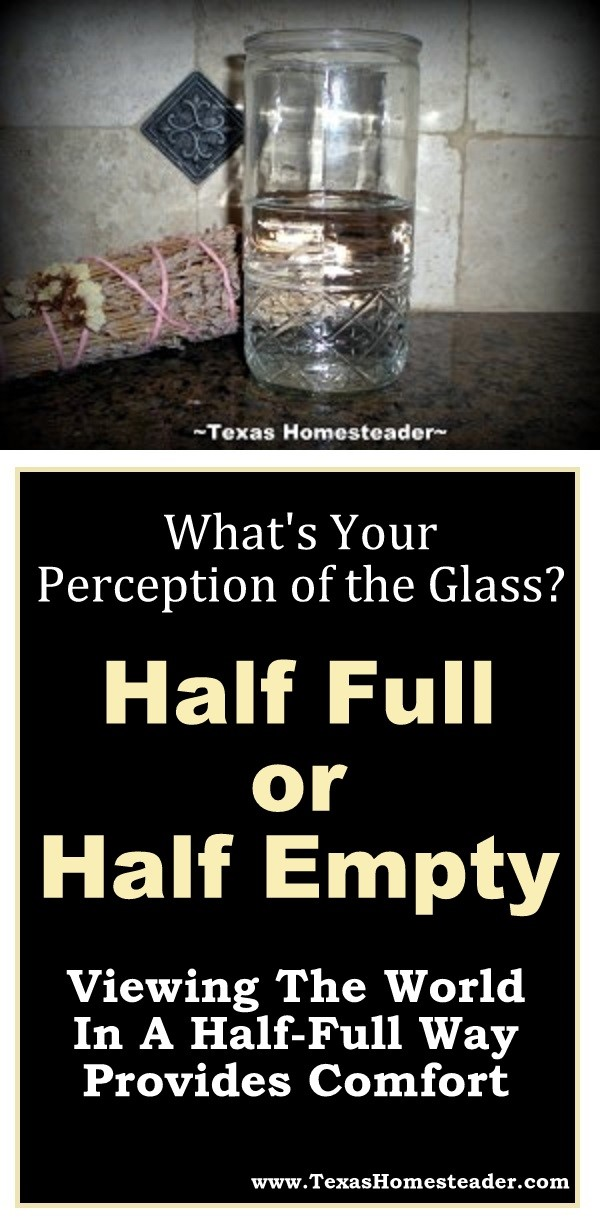 What's your perception of the glass - Half full, or half empty? Your perception of the glass can provide comfort & optimism. #TexasHomesteader