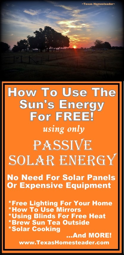 You don't need solar panels or expensive equipment to take advantage of Passive Solar energy for FREE! Come see my easy tips. #TexasHomesteader
