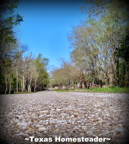 Country road. It's a wondrous world in the country, especially when viewed through a city-girl's eyes. Come see & experience with me #TexasHomesteader