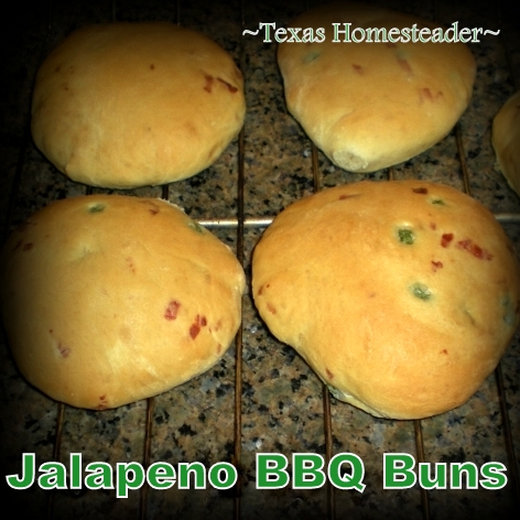 I often make jalapeno cheese beer bread, so why not jalapeno cheese beer buns to go with homemade pulled pork BBQ? These are delicious! #TexasHomesteader