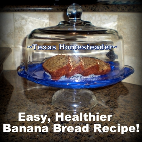 This healthier version of a favorite banana bread recipe replaces shortening with applesauce. #TexasHomesteader