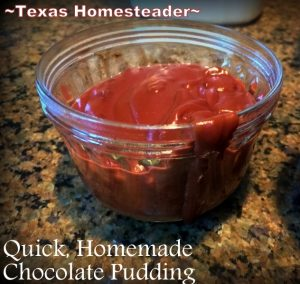 Chocolate pudding. 30-DAY GROCERY NO-SPEND CHALLENGE! No money spent on food for a full month - see how we survived our FINAL WEEK! Tips & recipes included #TexasHomesteader