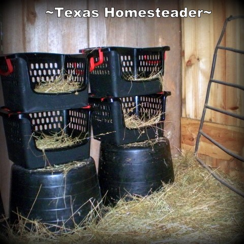 Nesting Boxes Using Crates. We're finally ready for our chicks to call our 1880's barn coop their home. But steps were needed to keep them safe. See what we did! #TexasHomesteader