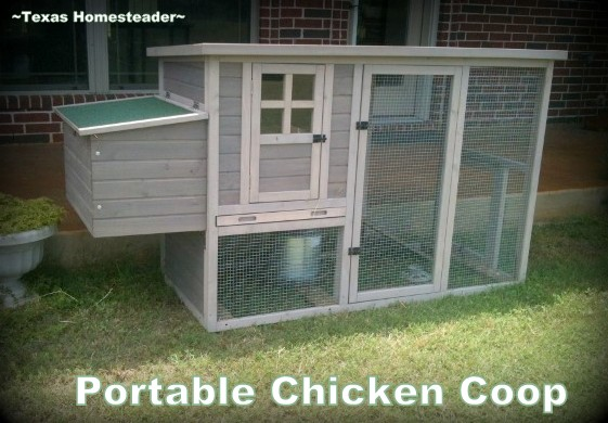 Portable chicken coop for our hens. #TexasHomesteader