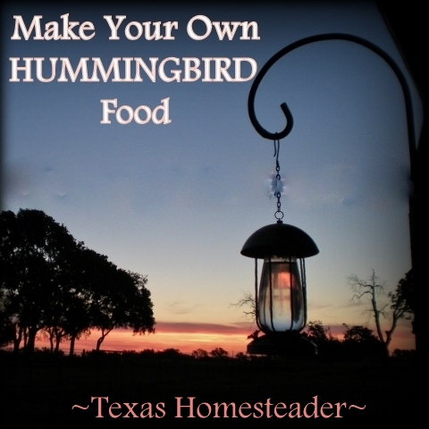 Make hummingbird nectar at home for a fraction of the cost of buying the commercial stuff - only two ingredients! Read how #TexasHomesteader