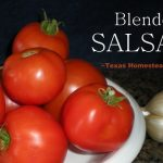 Blender salsa lets you use those delicious garden tomatoes with a TexMex flair. Enjoy eating your vegetables! #TexasHomesteader
