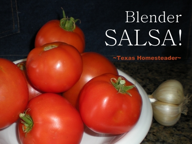 Dry Salsa Mix helps you make quick, easy inexpensive salsa that's better for you than the commercial stuff. Just salsa mix plus garden tomatoes, onions & garlic added to a blender #TexasHomesteader