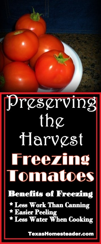 Freezing tomatoes has many benefits. Simpler than canning, releases moisture, simplifies peeling. #TexasHomesteader