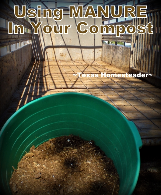 We have constant access to one of the most important components of my compost - Manure! Come read how we use this precious resource #TexasHomesteader
