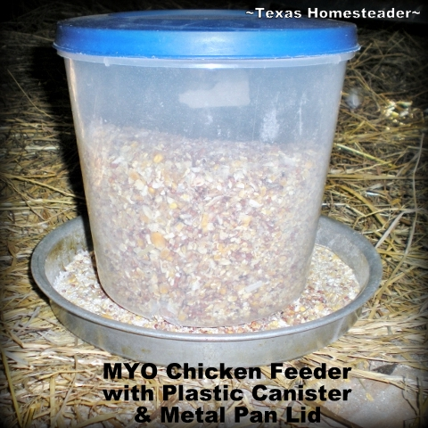 Goodwill finds helps us make a low-waste chicken feeder for cheap! #TexasHomesteader