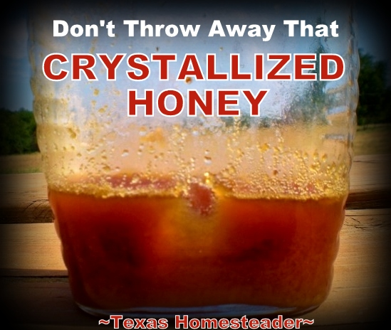Honey is said to be the only food with NO expiration date. Don't throw that honey away when crystals form - save your honey for years! #TexasHomesteader