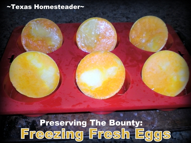 1 egg per frozen disk. Although you can't freeze fresh eggs in the shell, there is an easy way to preserve eggs for future use by freezing. #TexasHomesteader