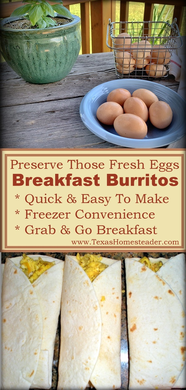 Homemade Convenience Food! I made breakfast burritos for the freezer so I could make sure none of our pastured eggs go to waste. #TexasHomesteader