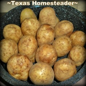 Ideas for a large bag of potatoes. There are several different ways I make the most out of my grocery dollar budget. It's most important to use what you've already bought! #TexasHomesteader