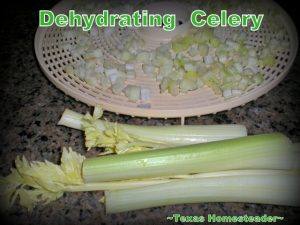 Dehydrate celery to to eliminate food waste. Can you eat your compost? Come see ways I've saved food previously destined for the compost pile for delicious use in my kitchen. #TexasHomesteader