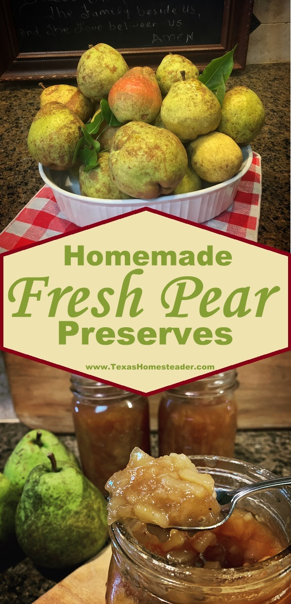A dear friend gave me her amazing recipe for pear preserves, and she said I could share the recipe with you. You're Welcome! #TexasHomesteader