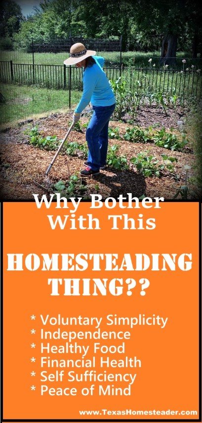 Why bother with homesteading? Health, finance, independence and self sufficiency. #TexasHomesteader