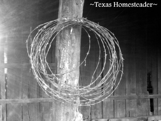 Black & white photo of barbed wire hanging on the post of an 1880's barn. #TexasHomesteader