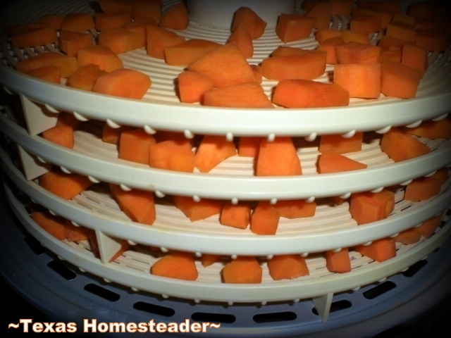 Dehydrating Carrots. Don't Waste Food! Produce doesn't have to be beautiful to be delicious. See how I play fairy godmother to some ugly carrots. #TexasHomesteader