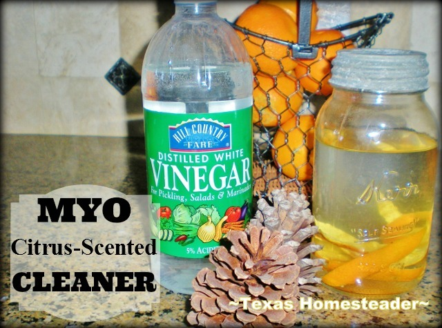 MYO Citrus-scented cleaner. There are so many ways to reduce waste in your kitchen to make a huge impact in reducing the amount of landfill trash spilling from your home! #TexasHomesteader