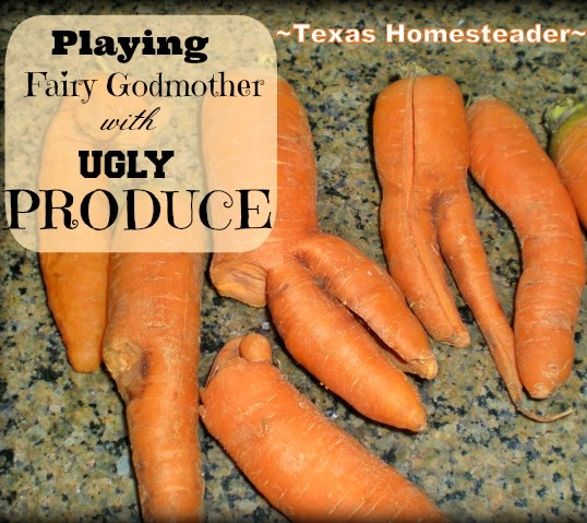 Don't Waste Food! Produce doesn't have to be beautiful to be delicious. See how I play fairy godmother to some ugly carrots. #TexasHomesteader