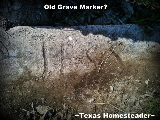Grave Marker. Evidence of an old abandoned homestead. It has an 1880's barn, orchard of jujube trees & is in need of TLC! #TexasHomesteader