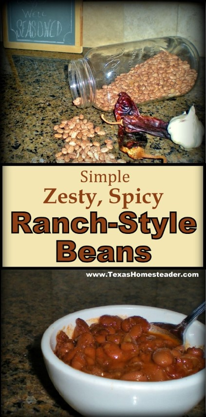 It's simple to cook regular dry pinto beans into zesty, spicy Ranch-Style Beans. Come see how. #TexasHomesteader
