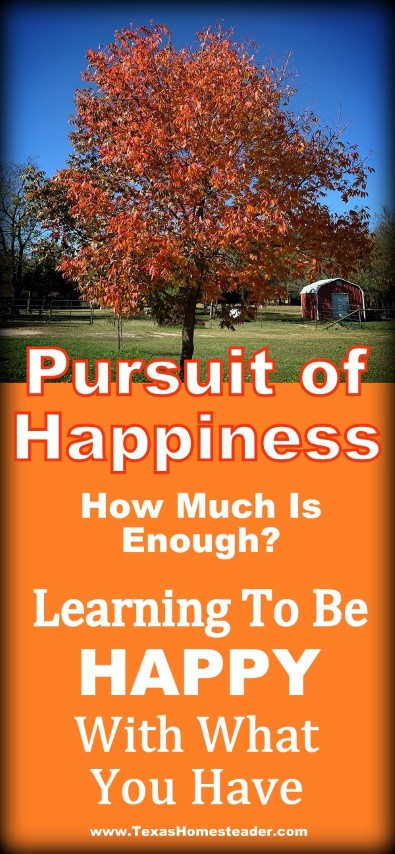 Learning to be happy with what you have. The pursuit of happiness, how much is enough. #TexasHomesteader